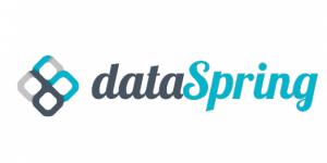 Logo Data Spring